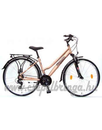 Schwinn Csepel Traction 100